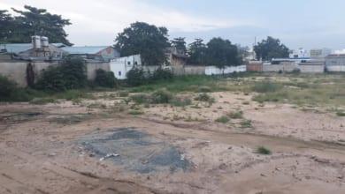 Photo of Tiến độ xây dựng căn hộ D-One Gò Vấp tháng 8/2019